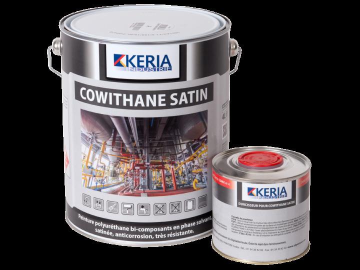 COWITHANE SATIN   CD PEINTURES